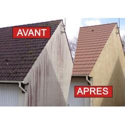 RAVANET PLUS, nettoyant de facade