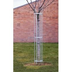 Corset pour arbre, diamètre 250