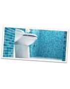 Hygiene sanitaire